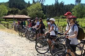 Tour en Bicicleta por los Viñedos