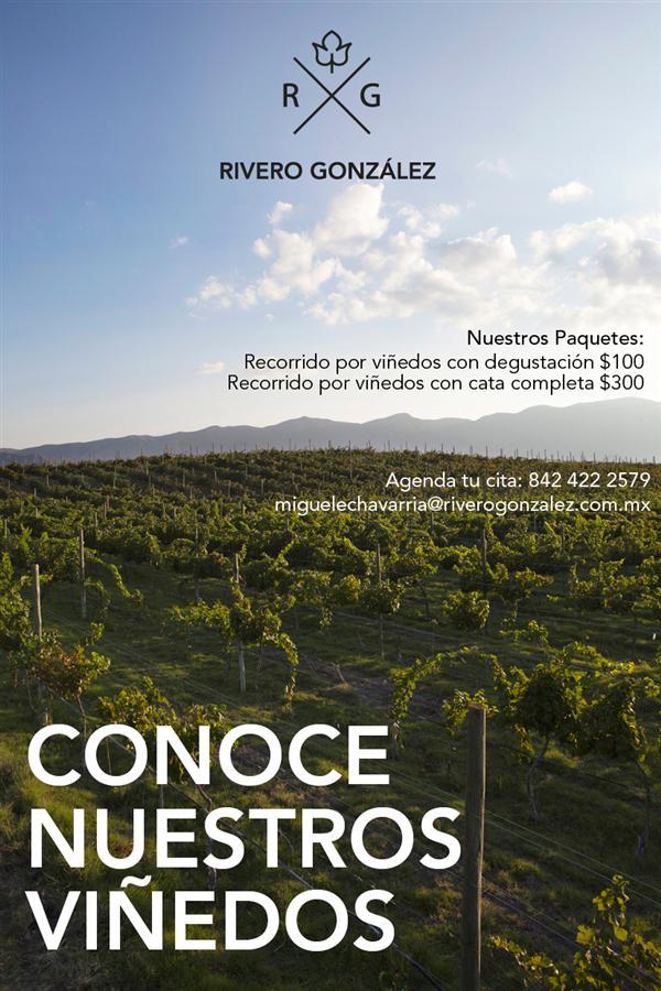 Conoce los viñedos de la Bodega Rivero González