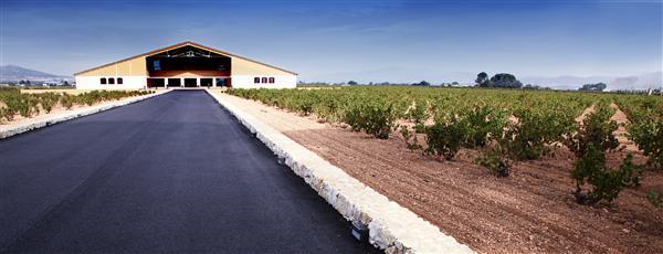 Visita y Cata de vino en Bodegas Barahonda