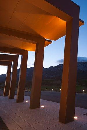 Copa  de vino y visita, de la mano de las Bodegas Lozano