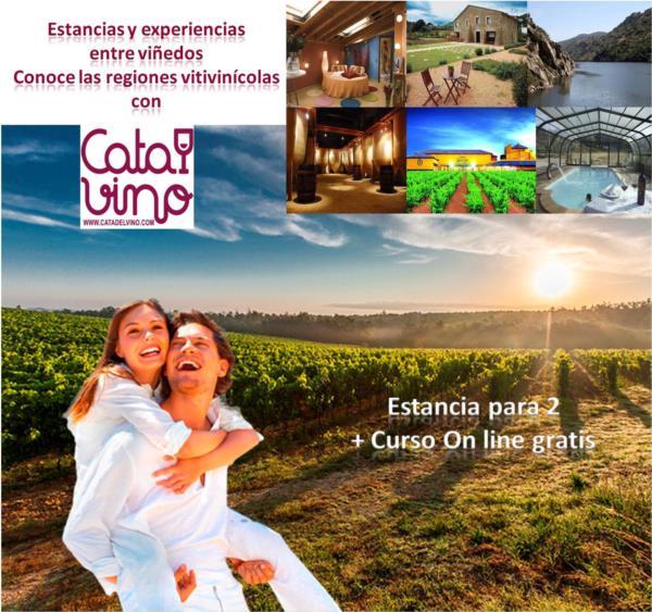 Cata de Vino + Alojamiento en Hotel Rural Villamencía para 2