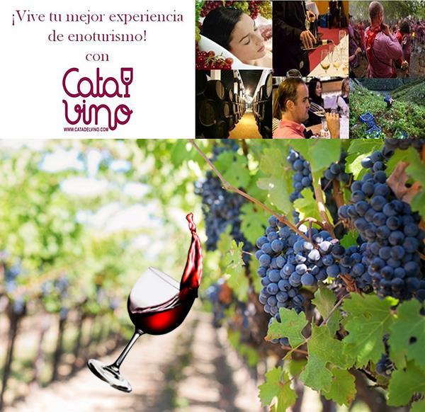 Cata de Vino en Bodega Terramoll para 2