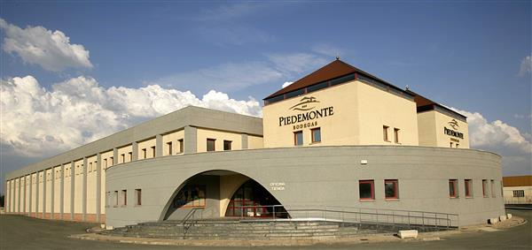 Cata de Vino en Bodegas Piedemonte + Curso on Line