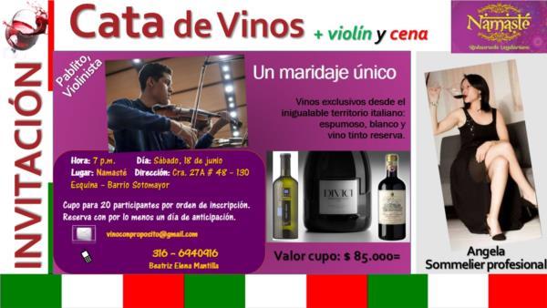 Cata de Vinos Italianos