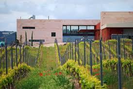 Curso de iniciación a la cata de vino en Bodegas Comenge para 2