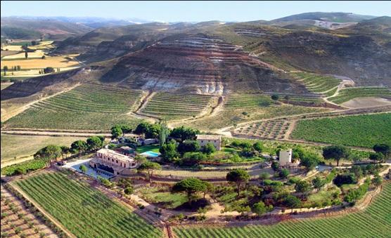 Curso de vinos tintos en Pago de Calzadilla