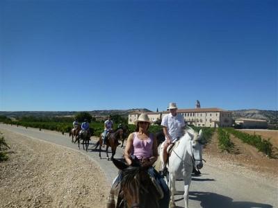 Paseo a caballo + Cata de vino