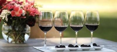 Maridaje de Vino & Choco orgánico