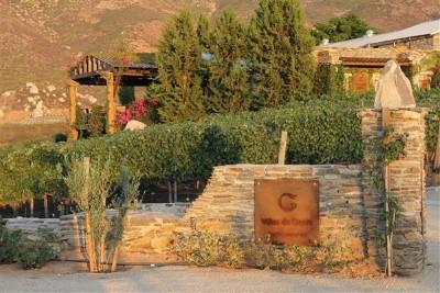Degustación en terraza: cuatro vinos
