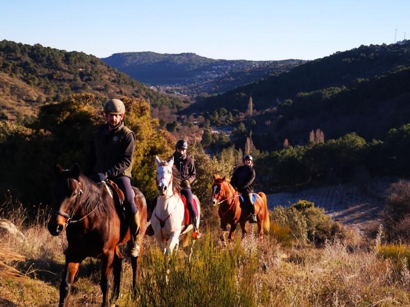 Monta a caballo, visita una bodega casi centenaria, con cata y  maridaje, para 2 personas