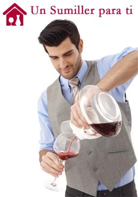Cata de vino en tu casa de Portugalete (Vizcaya)