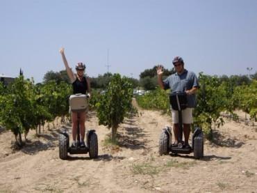 Tour Segways entre viñas y curso de cata de vino