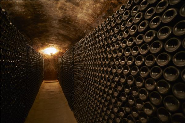 Visita a Bodegas De Alberto La Memoria Habitada + cata de tres vinos