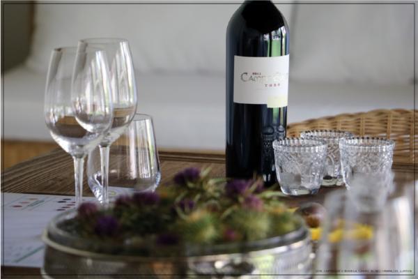 Visita gastronómica informal a la Bodega Campo Eliseo.