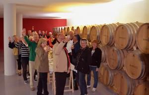 Visitas Vip, degustación 6 vinos SILVANO GARCIA