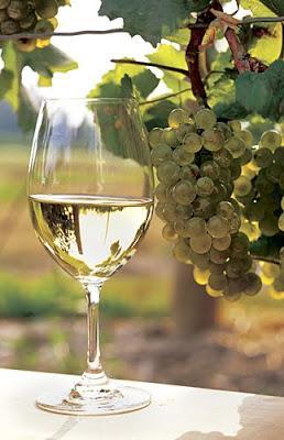 Las variedades de uva blanca más cultivadas en Argentina.