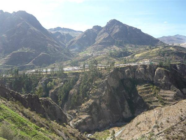 La importancia del valle de Moquegua en la historia vitivinícola de Perú.