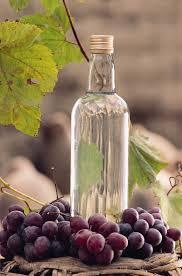 Expansión de la viticultura del vino pisco en Perú