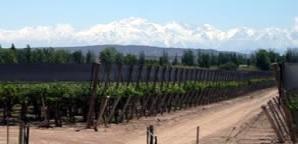 ¿Conoces el Valle vitivinícola de Uco en Argentina?