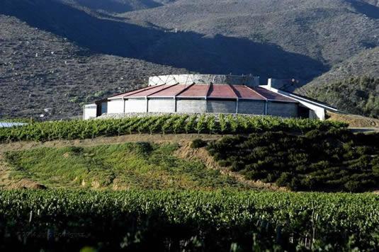 ¿Conoces el valle de Santo Tomás en la Ruta Antigua del Vino de Baja California?.