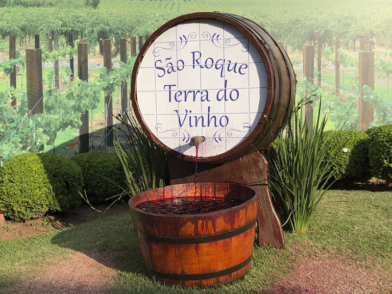 san roque terra do vinho