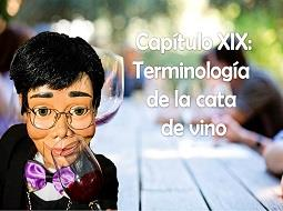 Capítulo XIX: La terminología de la cata del vino