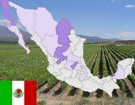 ¿Dónde puede hacer enoturismo en Mexico?.