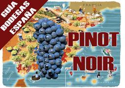 Guía de Bodegas productoras de vinos pinot noir en España.