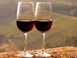 La actual campaña 2018 comienza con 33,3 millones de hectolitros de vino y mosto.