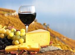 La feliz armonía de queso y vino. Gastronomía regional.