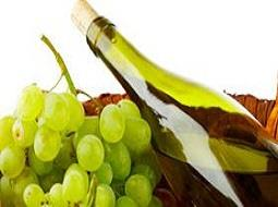La Ruta del vino de Rueda apuesta por los sabores del mejor maridaje con vino.