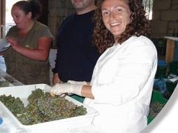Los bagazos de alcholeras como fuente de nutracéuticos.