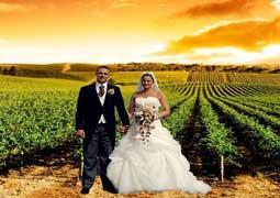 Ocho razones para casarse en un viñedo, y su bodega.