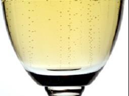 ¿Qué tipo de vino Cava te gusta?..¿lo tienes claro?.