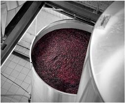 ¿Sabes cómo se elaboran los vinos de maceración carbónica: Beaujolais?