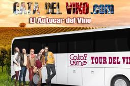 Tour del vino en autocar por España: La mejor forma de hacer enoturismo.