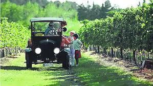 Uruguay se abre camino en el enoturismo.