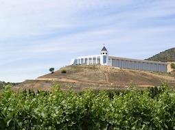 Valle de Casablanca, paraíso del vino blanco chileno.